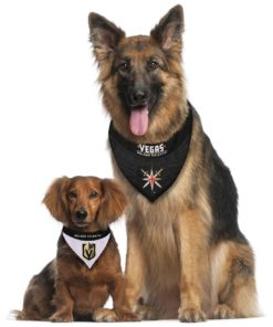 VGK Dogs